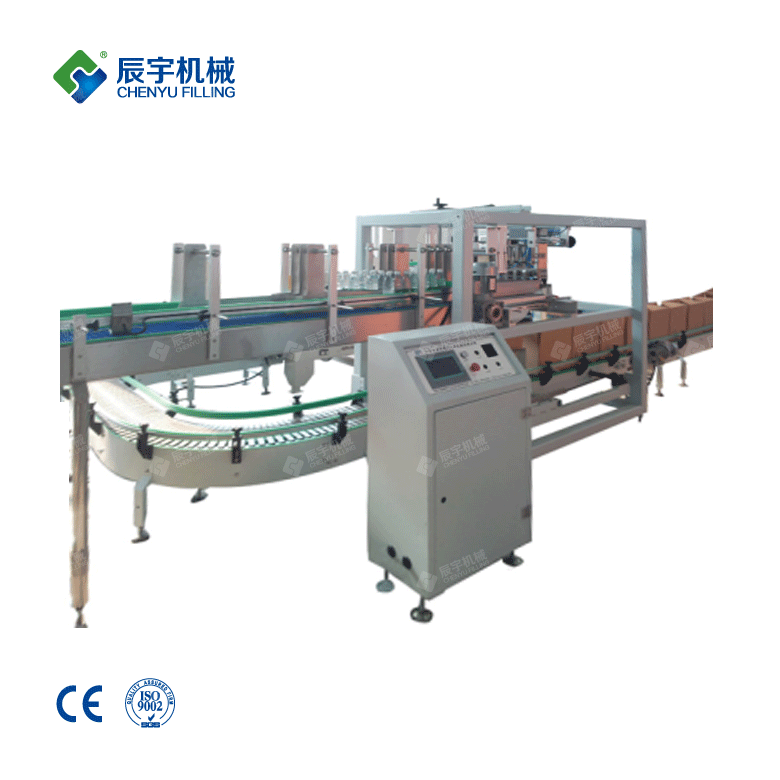 Automatic Carton Packing Machine