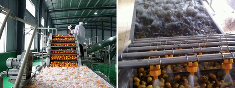 Fruit and Vegetable Air-blowing Washing Machine-water filling machine|water?bottling?machine|bottle?filling?machine|Suzhou CHENYU Packing Machinery Co., Ltd.